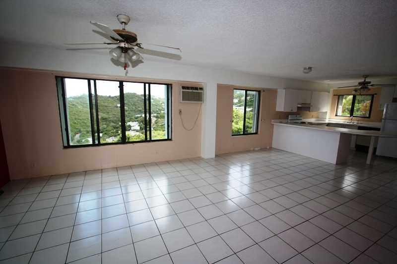 Condos for sale virgin islands